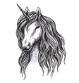 unicorn horse sketch of magic animal with horn vector image vector image