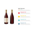wine in bottle infographics template with 4 vector image vector image