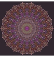 Violet and Pink Line Mandala vector image