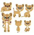 ginger kitty in different poses animal vector image vector image