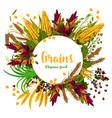 grains fresh organic food poster vector image vector image