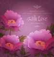 peony background vector image vector image