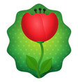 tulip 3d flower isolated on green dotted vector image