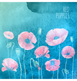 watercolor red poppies on blue background vector image