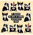 Dog French group bulldog vintage home sign frame vector image