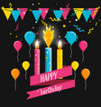 birthday candles with garlands and balloons air vector image vector image