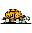 Box Turtle vector image vector image