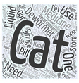 Deworming MultipleCats Word Cloud Concept vector image vector image