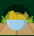 fresh fruits papaya cartoon vector image vector image