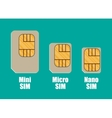 Modern sim card sizes mini micro nano vector image vector image
