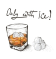 One glass with alcoholic drink and ice vector image