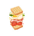 sandwich on square toasts with egg vector image vector image