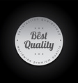 silver badge label theme vector image