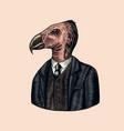 california condor gentleman american bird vector image vector image