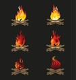 Firewood and Flame Bonfire vector image vector image