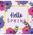 hello spring seasonal greeting card flowers frame vector image