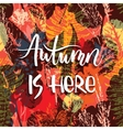 Lettering design with abstract autumn seamless vector image vector image