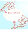 sakura blossom card vector image vector image