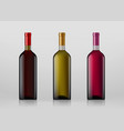 set of wine bottles isolated on gray background vector image
