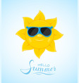 sun with blue sunglasses vector image vector image