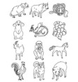 twelve animals of the chinese horoscope vector image vector image