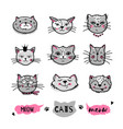 cats faces hand drawn doodle cats icons vector image vector image