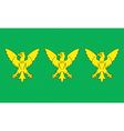 Flag of Caernarfonshire vector image vector image