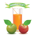 glass for juice from the ripe red and green apple vector image vector image