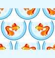 gold fish aquarium pattern vector image