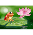 A frog above the waterlily beside a pink flower vector image vector image