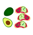avocado toast sliced avocado on toast bread with vector image