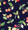 The seamless pattern cherries vector image