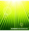Summer sunburst on green background vector image