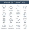16 wild icons vector image vector image