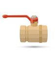 ball valve on white vector image
