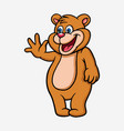 bear cartoon character vector image