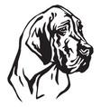 decorative portrait of dog great dane vector image vector image