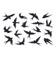 flying birds silhouette flock swallows sea vector image vector image