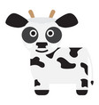 isolated cute cow vector image vector image