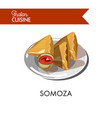 traditional indian somoza with sauce on shiny vector image vector image
