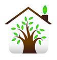 eco house design vector image