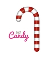 sweet cane delicious isolated icon vector image