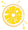 orange fruits fresh juice vector image