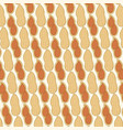 background pattern with peanut in shell vector image vector image