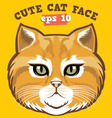 cute cat head vector image vector image