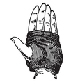Glove vector image vector image