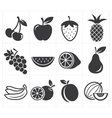 icon fruit vector image