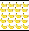 bunches bananas in yellow and green shades vector image vector image