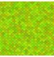 Fish scales texture art vector image