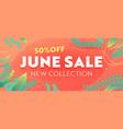 june sale summer discount banner floral vector image